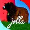 JollaPhot's picture